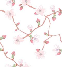 Sakura web background